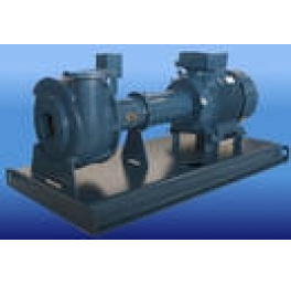 Landustrie Grizzly Dry Installation Sludge Pump Type BNP